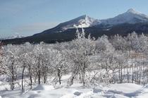 パノラマの窓から、雪の磐梯山が眺められます。