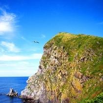標高93メートルのペシ岬から眺める風景はおススメ絶景ポイントの1つ。