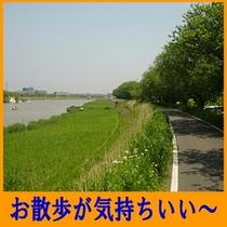 トキワの前の桜川(お散歩がきもちいい〜)