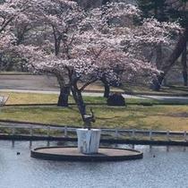 *【鶴銅像と桜】春はお散歩をしながらお花見を♪