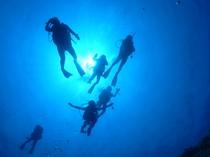 【アクティビティ】ボートダイビングで探検ダイビングも思いのままに楽しめる♪