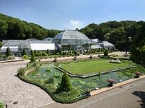 東山動植物園「温室」