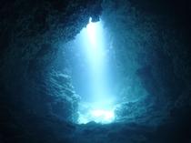 【ダイビング】光が射し込み神秘的な雰囲気。