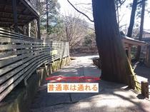 アクセス案内④よく言われる狭い箇所。神社の木なので切る訳にも。ご理解ください。普通車通ります。