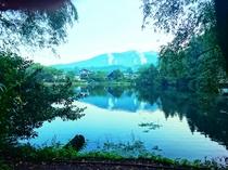 金鱗湖の朝