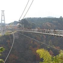 夢の大つり橋