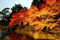 栗林公園7