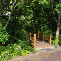 散歩道の橋