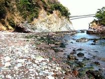 有名な中川一政画伯の美術館もある『真鶴半島の浜辺』