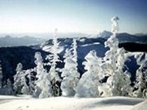 冬の横手山頂より