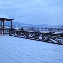 【四季の森景観】1月の雪景色