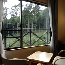 ツインルームからの眺め