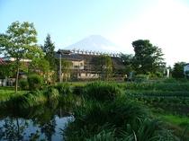レイク忍野よりの初夏の富士山