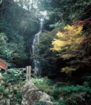 観音の滝/天ヶ瀬3大名瀑のひとつ