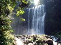 桜滝/天ヶ瀬3大名瀑のひとつ