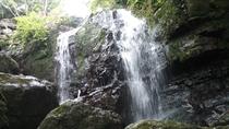 野底岳ふもとに流れる小さな滝
