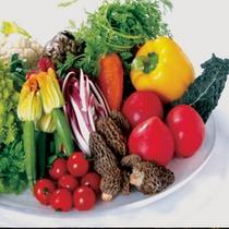 淡路西洋野菜園の無農薬の野菜
