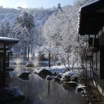 庭園(冬)
