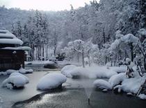 冬の大庭園