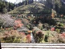 秋の庭の眺め