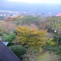 お部屋からの景色 秋④