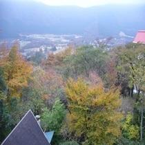 お部屋からの景色 秋③