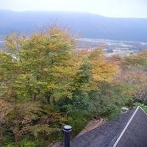 お部屋からの風景 秋