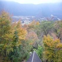 お部屋からの風景 秋②