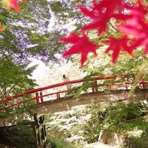 伊香保温泉の紅葉スポット「河鹿橋」