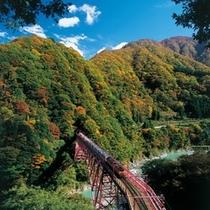 20015_秋_新山彦橋15