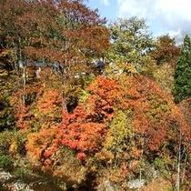 施設周辺/鴬宿温泉の紅葉シーズン風景