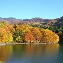 鴫に谷地沼の紅葉