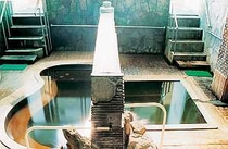 オリジナル源泉のいさぜんの湯が人気