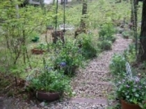 n お庭3