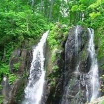 【不動滝】規模の大きな滝で、高さ53.5m、幅16m、滝つぼ32mもございます
