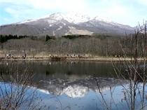 妙高山といもり池(春)