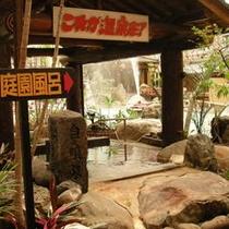 大浴場内温泉の一例