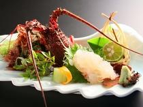 【伊勢海老お造り】房総を代表する高級食材のひとつ「伊勢海老」