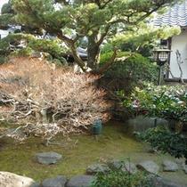 館内の中庭