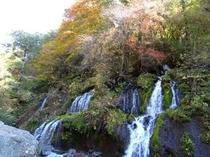 吐竜の滝と川俣渓谷の紅葉