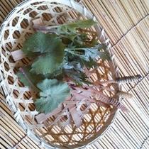 山菜(かご入り)