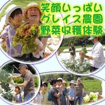 9月はグレイス農園公開月です。
