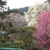 *庭園02
