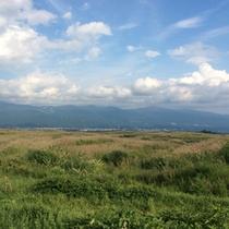 東富士演習場自衛隊横断道路のすすき野原