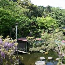 *一の瀬の庭園にはたくさんの花や緑が広がり、四季の表情をお楽しみいただけます。