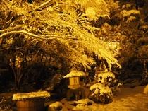 お庭 雪景色夜ライトアップ