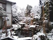 お庭の雪景色