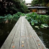 松泉湖 茶室と桟橋