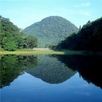 夏の大沼。景色を眺めながら歩けば気分爽快♪ハイキングにもぴったりです!