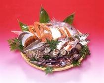 日本海の魚三味
